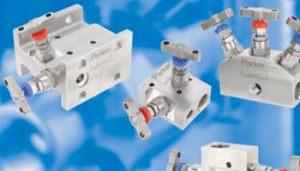 What is a Double Block & Bleed Valve